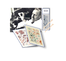 Pictures of the begining of Cytology history