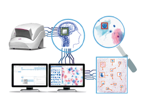 Innovative technological device for medical images analysis