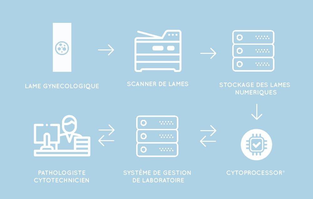 étapes de traitement des données images de cytologie : lame gynecologique, scanner de lames, stackage des lames numériques, cytoprocessor détection automatisée des cellules anormales, système de gestion en labo, intervention du pathologiste cytotechnicien